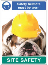 Safety Helmets must be Worn - Dog Poster